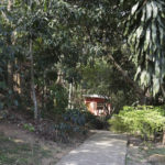 Pousada Itaipava, Petrópolis, RJ, Suíte Cafezal