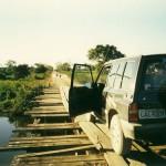 Pantanal Norte - MT